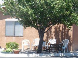 Ahepa 501 I and II - Senior Affordable Living  Apartments