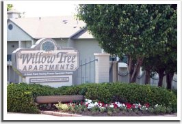 Willow Tree Apartments