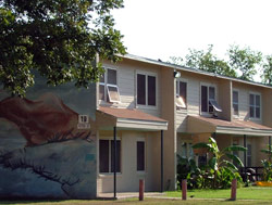Cassiano Homes San Antonio Housing Authority Public Housing Apartment