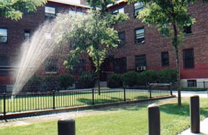 Archdale Village Boston Low Rent Public Housing Apartments