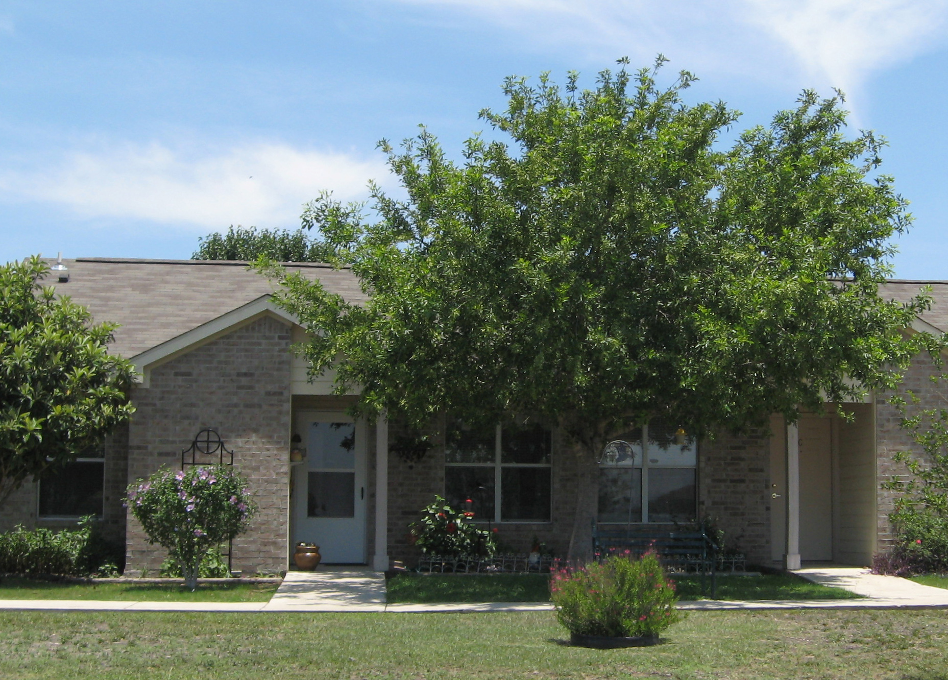 La Vista Apartments - Affordable Senior Housing, 1615 ...