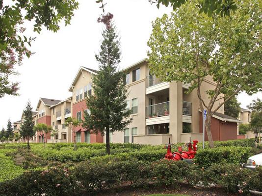 Arbor Park(CA) - Affordable Community