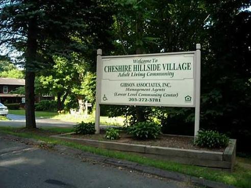 Cheshire Elderly Village II